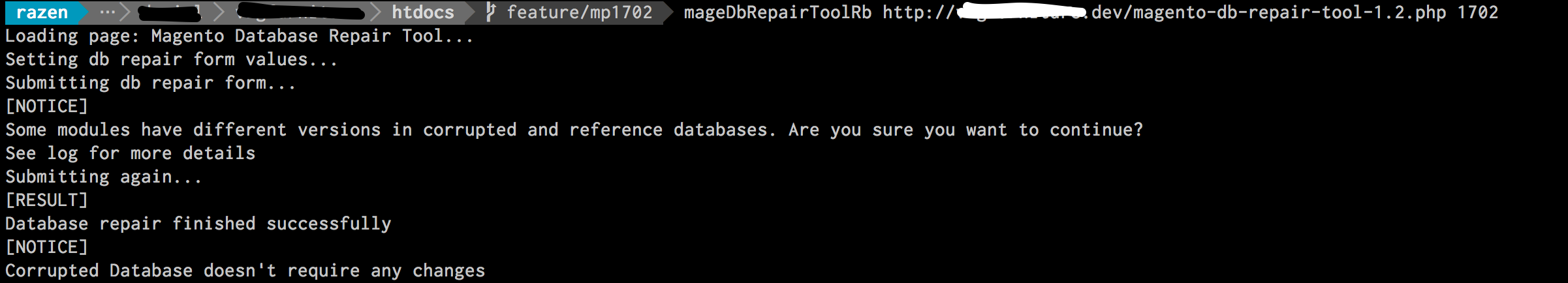 Ruby DB Repair Tool Console Output